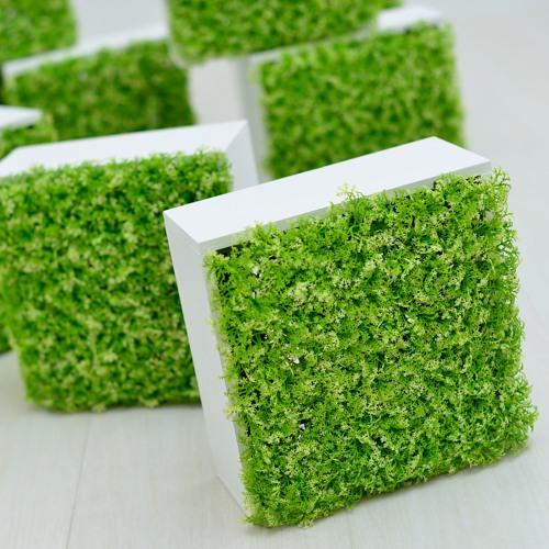 green_box.jpg