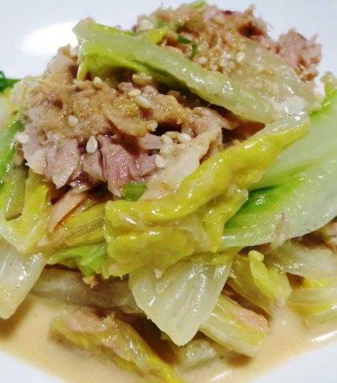 白菜とツナのマヨポンサラダ B