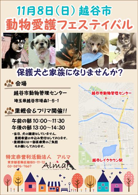 poster1108.jpg