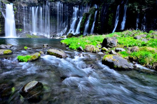 翠彩る白糸の滝