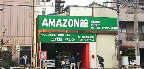 amazonbelem2
