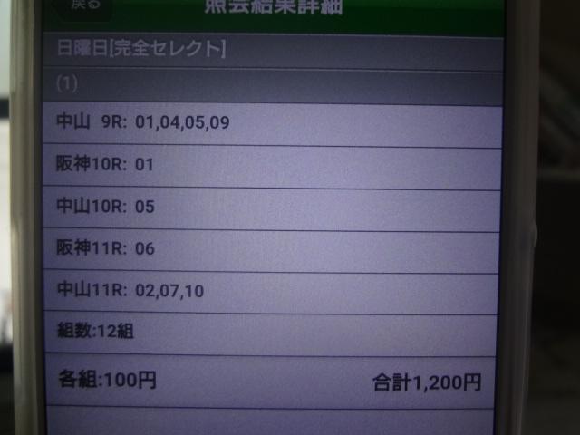 DSC02545.jpg
