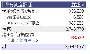 評価損益20151121