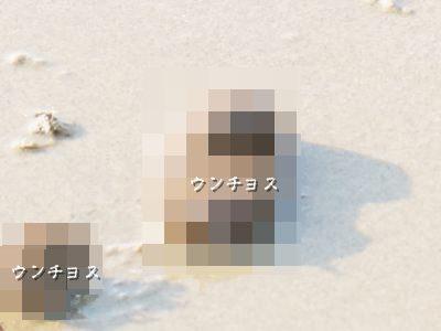 20160329_7.jpg