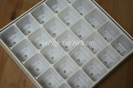 151104お菓子の空き缶2