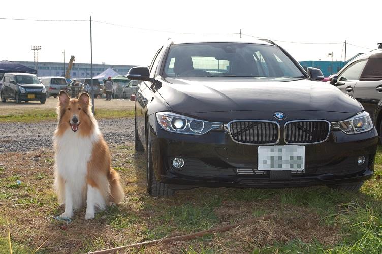 BMWaro01.jpg