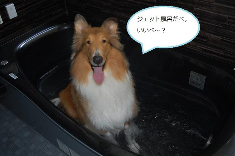 ohuro01.jpg