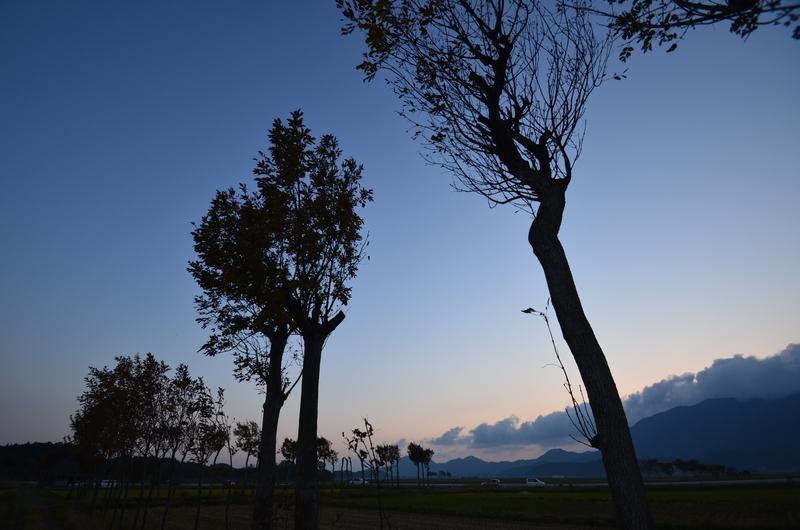 はざ木の夕暮れ-3