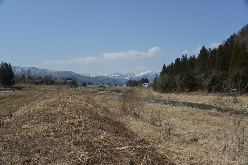 山里の春-5