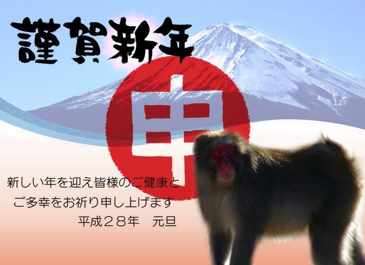 photo_yoko_wahu_hagaki_y_22_f2.jpg