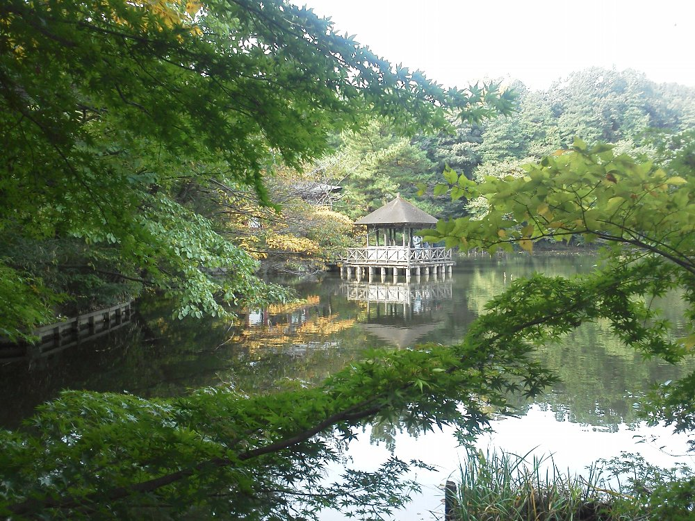 F1000110石神井公園