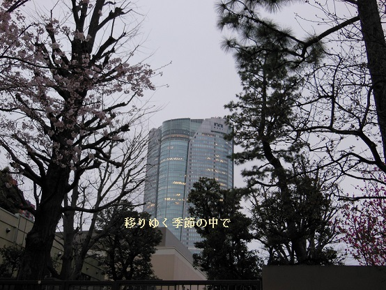 20160402rs6.jpg