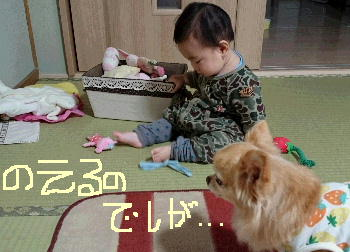 blog2015111501.jpg