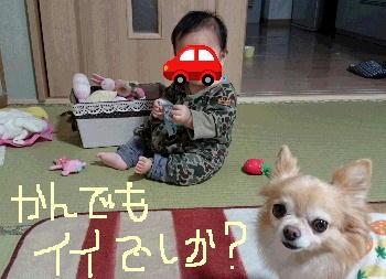 blog2015111502.jpg