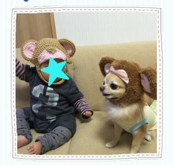 blog2015112402.jpg