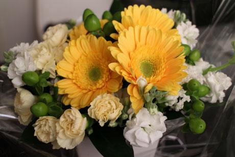 ミースケが選んだお花