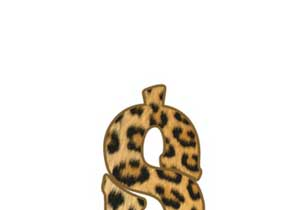 T-shirt Leopard pattern Dollar