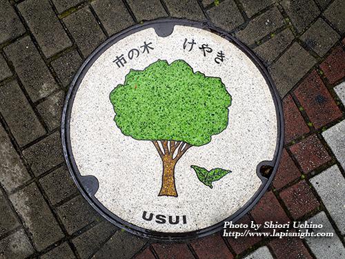 【東京都 西東京市(旧田無市) マンホール -けやき-】