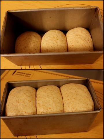 16.03.15胚芽食パンdeホットサンド3