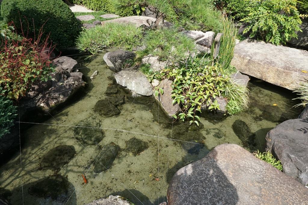 清浄池_2