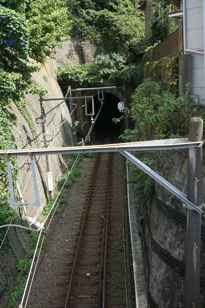 桜橋からみた極楽洞_1