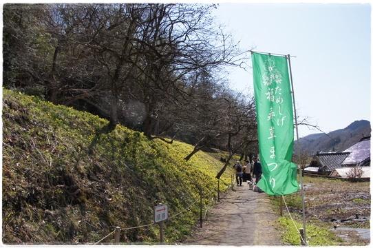 fukujyusou1.jpg
