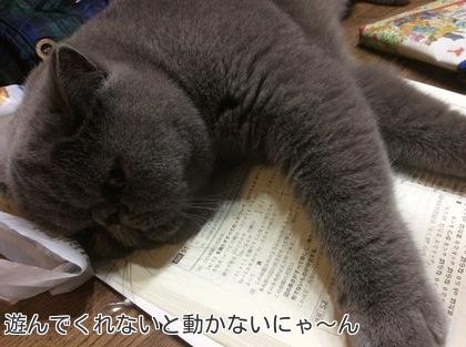 娘の宿題の邪魔をするへいちゃん。