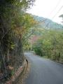 151107紅葉峠を亀岡側へ下る