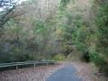 151122牧杉谷線、晩秋~冬枯れの舗装林道を行く