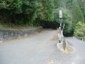 151122東笠取梅谷から西笠取方面へ上る