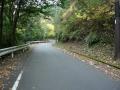 151122谷山林道を西笠取側から上る
