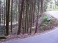 151122谷山林道を炭山方面へ下る