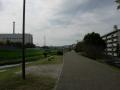 151122山科川の自転車歩行者道をのんびり流す
