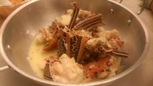 dansing crab (5)