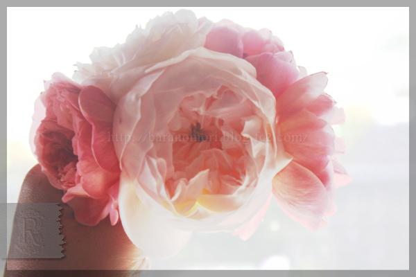 手作りせっけん 庭バラ 薔薇 真空抽出 ウルトラ抽出 20151030