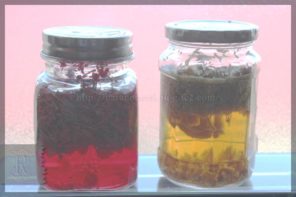 石鹸シャンプー リキッド 手作りせっけん 石けん リン酢 ハーブ 20151104