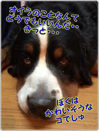 011_convert_20151101154638.jpg