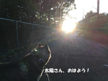 20150930_1.jpg