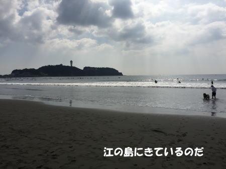 20151018_3.jpg