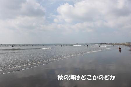 20151019_1.jpg