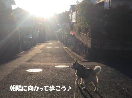 20151105_3.jpg