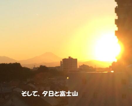 20151105_7.jpg