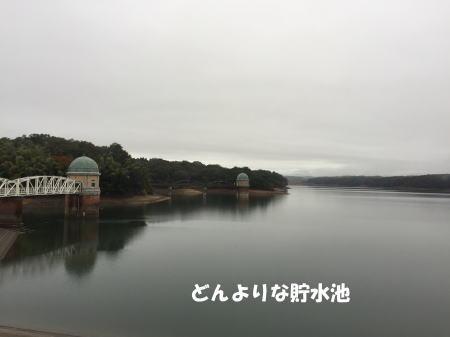 20151116_4.jpg