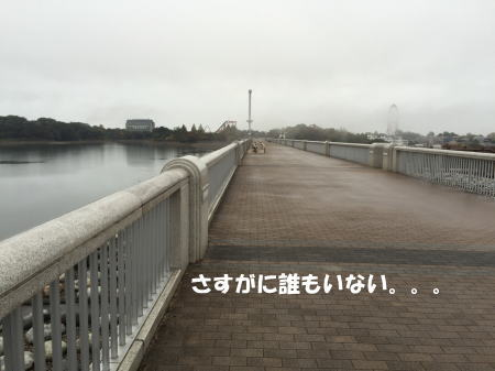 20151116_5.jpg