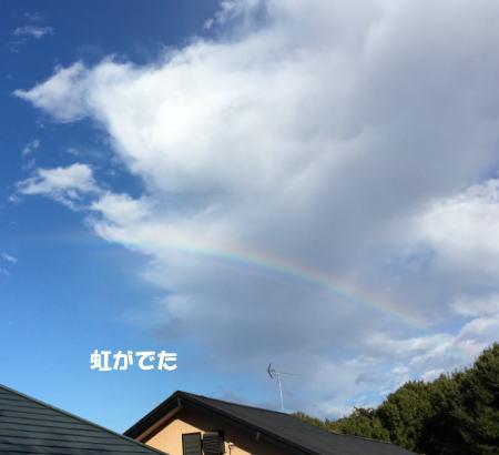 20151116_8.jpg
