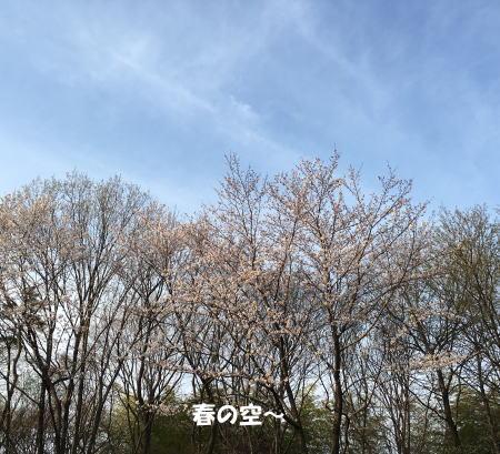 2016-03-30_1.jpg
