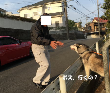 2016-03-30_2.jpg