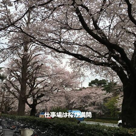 2016_0401_1.jpg
