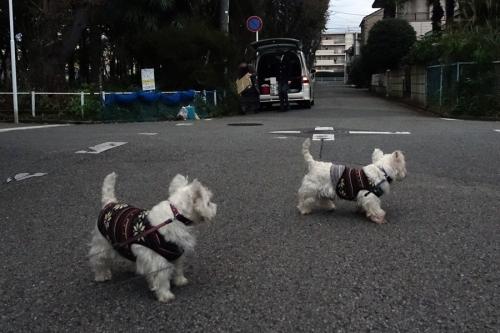 yattaranakagayoihimoaru4.jpg