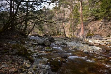 11川上渓谷